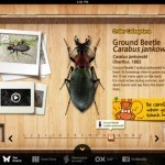 App Review and Giveaway: Meet the Insects – Forest Edition | Educational Apps and Beyond | Scoop.it