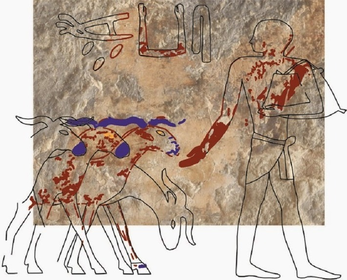 Wall painting discovered in priest's tomb at Giza | The Archaeology News Network | Kiosque du monde : Asie | Scoop.it