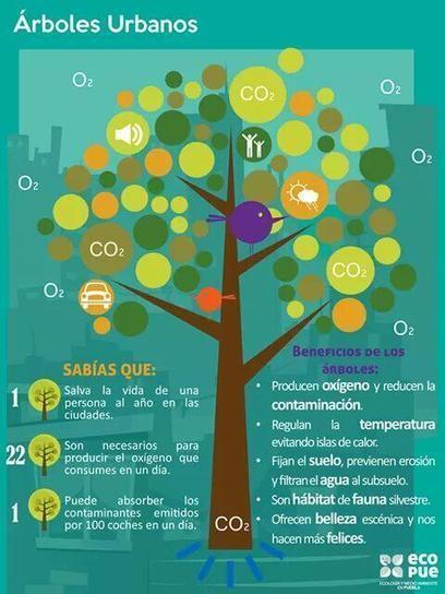 Twitter / ITLG_Ambiental : ¿Sabes cuáles son los ... | Ecología sostenible | Scoop.it