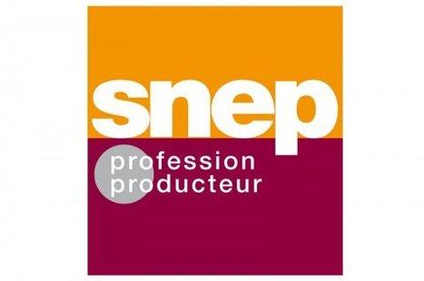 L'Economie de la production musicale 2012 consacre la singularité française en matière de streaming | Veille Musique | Scoop.it