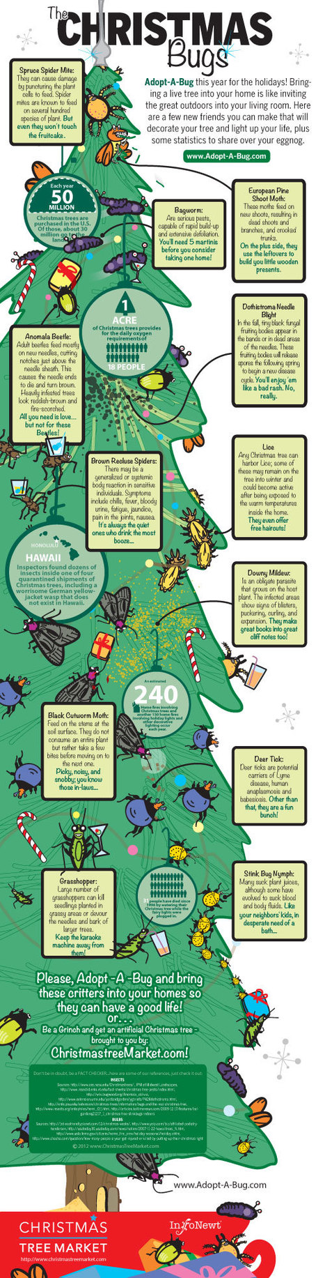 The Christmas Bugs: Adopt-A-Bug this holiday ... - Cool Infographics | Infographics Universe | Scoop.it