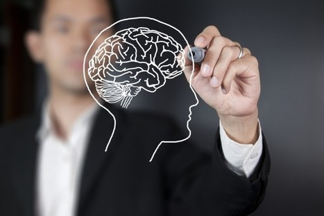 Best and Worst of Neuroscience & Neurology – February 2015 - Brain Blogger (blog) | Cognitive Neuroscience and Learning | Scoop.it