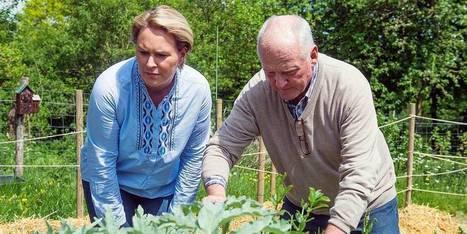 Les Bruxellois encouragés à produire leur propre nourriture | Agriculture urbaine et rooftop | Scoop.it
