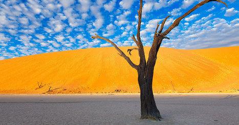 Ce photographe a parcouru le magnifique désert de Namibie pour vous rapporter des clichés saisissants | Les déserts dans le monde | Scoop.it