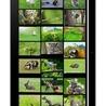 Animal Sounds & Pics For Kids