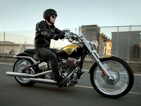 Harley-Davidson Celebrates Its 110th Anniversary With New Models At EICMA | My Yonk | Scoop.it