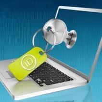 Fleur Pellerin relance le projet d'identité numérique   Information security   Scoop.it