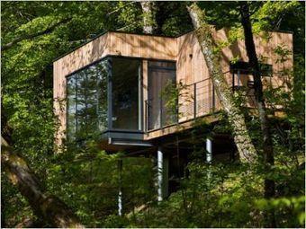 Des cabanes bois sur pilotis plong es da for Maison en bois sur pilotis