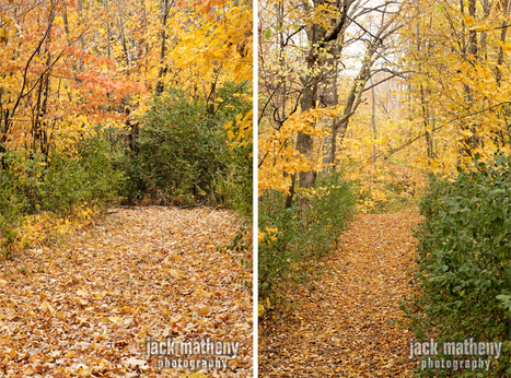 October | Milwaukee Lifestyle Photographer » Jack Matheny ... | Life & real estate in Metro Milwaukee with First Weber | Scoop.it
