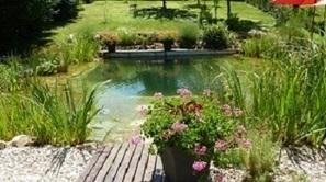 39 piscine naturelle 39 in guide piscine infos et conseils sur l 39 univers de la piscine. Black Bedroom Furniture Sets. Home Design Ideas