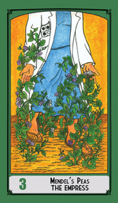 Science Tarot Cards | Nature as a substrate:  art and craftwork | Scoop.it