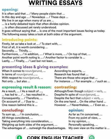 Outline Of A Cause And Effect Essay Writing Essays For Dummies Download The Most Dangerous Game Essay Questions also Edgar Allen Poe Essay Writing Essays For Dummies Download  Wrexdingp Is The World Overpopulated Essay