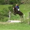 L'équitation concours complet et débourrage