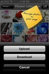 PhotoBox! Pro - Making Photo Management Easy on Facebook!   Being Social Us   Scoop.it