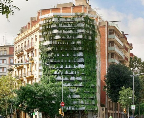Beautiful, Innovative, and Sustainable: The Future of Green Architecture | Design on GOOD | Sustainable business arts | Scoop.it