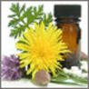 HOMOEOPATHY (Homeopathy)
