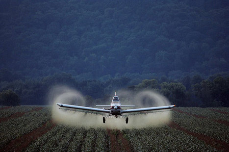 Women's Health Issues Linked to Insecticide Exposure, Too | Global politics | Scoop.it