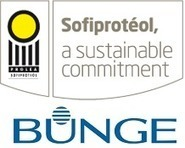 Bunge, Sofiproteol to Review Joint Biodiesel Venture - Domestic Fuel | The Biofuels Buzz | Scoop.it