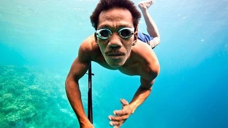The Bajau, Hunters of the South Seas - BBC Two   Criminology and Economic Theory   Scoop.it