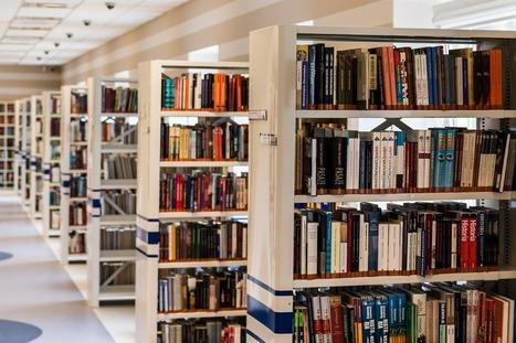 Vijf jaar Bibliofuture: Gastblog Wim Keizer > Bibliofuture | trends in bibliotheken | Scoop.it