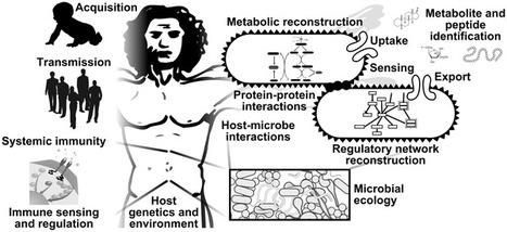 PLOS Computational Biology: Bioinformatics for the Human Microbiome Project | CBiB - Bordeaux Bioinformatics Center | Scoop.it