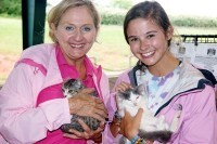 Threat of Rain Doesn't Deter Animal Rescue Groups - Patch.com | Animal Rescue Web Digest | Scoop.it