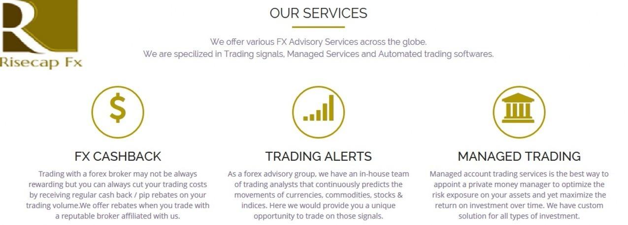 crypto trade simulator best forex advisory service
