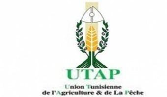 Tunisie : L'Utap préoccupée par le déficit en eau d'irrigation - African Manager