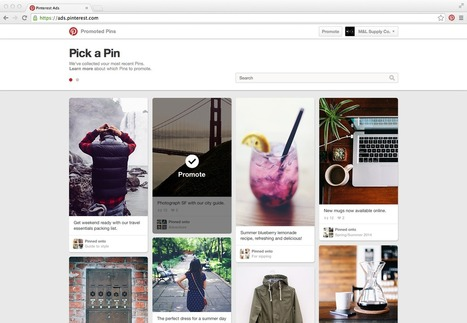 DYI Promoted Pins - New Tool for Businesses | Pinterest for Business | Scoop.it