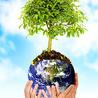 Educação e Meio Ambiente
