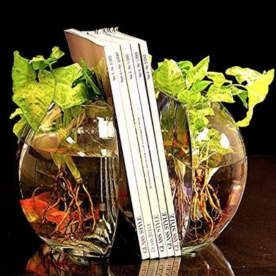 14 Creative and Cool Fishbowl Designs.   Xposed   Scoop.it