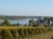 Routes des Vins de la vallée de la Loire, Angers et Saumur   Mon Vigneron, oenotourisme en France   Tourisme viticole en France   Scoop.it