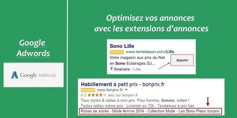 Google Adwords | Institut Pellerin - Formation | Management et promotion | Scoop.it