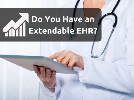 Do You Have an Extendable EHR? | EHR and Health IT Consulting | Scoop.it