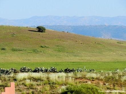 L'Auberge Tintafoukt, un séjour au pays de l'argan | Ecotourisme au Maroc | Scoop.it