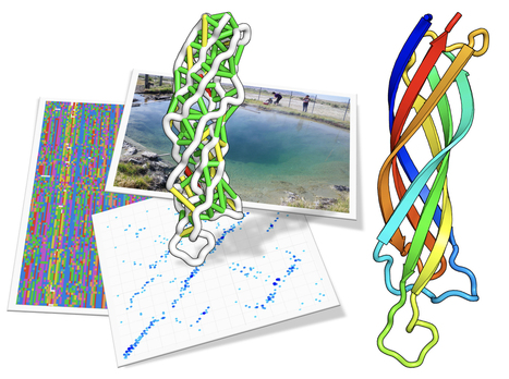 Seeking Structure With Metagenome Sequences  | Amazing Science | Scoop.it