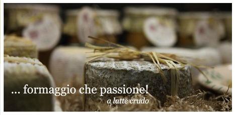 Local Home-made Cheeses from Fontegranne - Belmonte Piceno - Fermo | Casolare Re Sole | Scoop.it