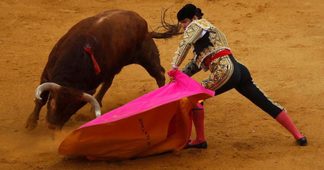 Facebook's Bullfighting Dilemma | Animals R Us | Scoop.it