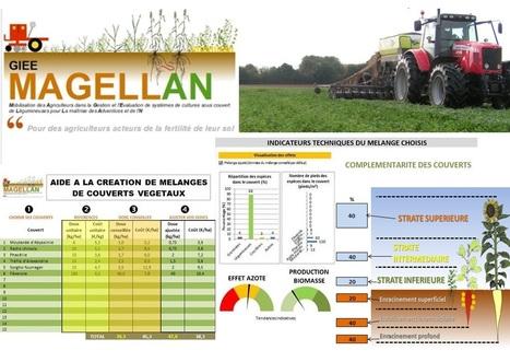 Le GIEE Magellanen pleine réflexion sur les couverts d'interculture 2017 : Tableur d'aide à la création de mélanges de couverts végétaux | AC Agriculture de Conservation | Scoop.it