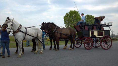 Follow Jack's adventures with his new roof seat break on Facebook | Carriage Driving Radio Show | Scoop.it