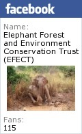 We're part of the #SciFund challenge! - Uda Walawe Elephants | #SciFund | Scoop.it