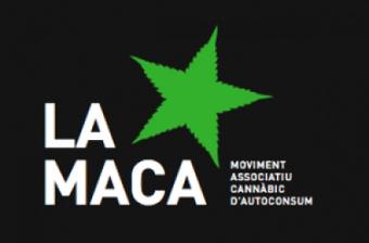Clausuran el local de la Maca | Marihuana Blog | thc barcelona | Scoop.it