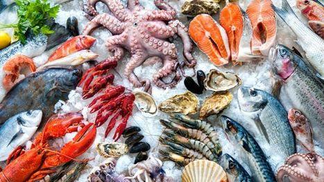 ¿Cuáles son los pescados que son menos nocivos para la salud porque tienen menos mercurio? - BBC Mundo | Apasionadas por la salud y lo natural | Scoop.it