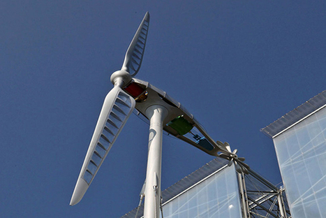 Revamped Wind Turbine Takes Design Inspiration From Dragonflies   midwest corridor sustainable development   Scoop.it