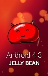 Full Steps to Update LG Optimus G E975 with Jellybean 4.3 Firmware - TechCrot | Android APK Download | Scoop.it
