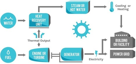 Dynamic Energy - A Leader in Energy Solutions | Combined Heat & Power | solar decathlon europe 2014 VIA-UJI | Scoop.it
