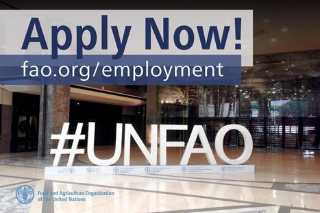 iRecruitment at FAO | Consultant(e) International(e) spécialisé(e) en productions végétales | Date limite 05 Octobre 2016 | FTN Mediterranean Agriculture & Fisheries | Scoop.it