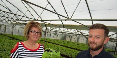 Saint-Pierre-d'Aurillac : soixante ans de travail dans les vignes | Oenotourisme en Entre-deux-Mers | Scoop.it