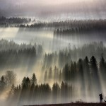 Fog Landscapes | Art, Design and Imagination | Scoop.it