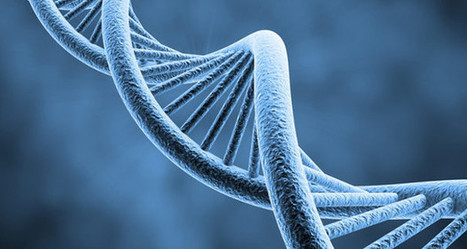 Nanogrande Invente Limpression 3d Moléc